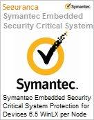 Symantec Embedded Security Critical System Protection for Devices 6.5 WinLX per Node Initial Essential 12 Meses Express Band D [100-249]  (Figura somente ilustrativa, não representa o produto real)